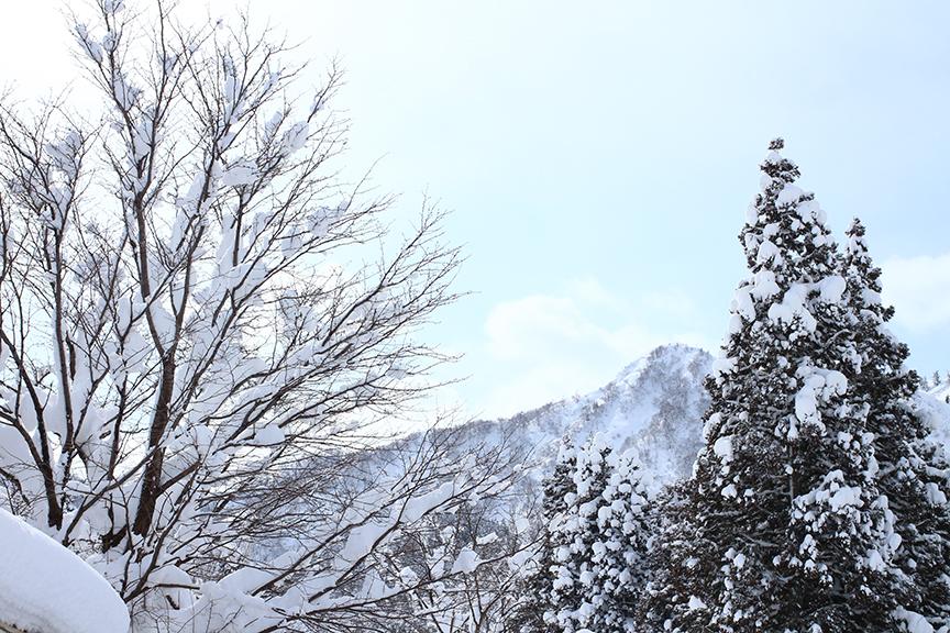 綺麗だな~。こういう景色が楽しめるのも雪道ドライブの楽しみの1つ