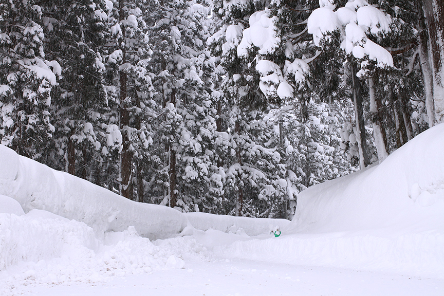3月初旬の新潟県道39号線(妙高高原公園線)冬期終点。この先は除雪されず通行止めとなっている