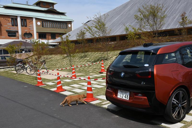 直島ホールの駐車場に置かれたBMW i3。こちらは通常カラーで、瀬戸内国際芸術祭の期間に直島で運用されているもの。奥に見えるのが直島町役場