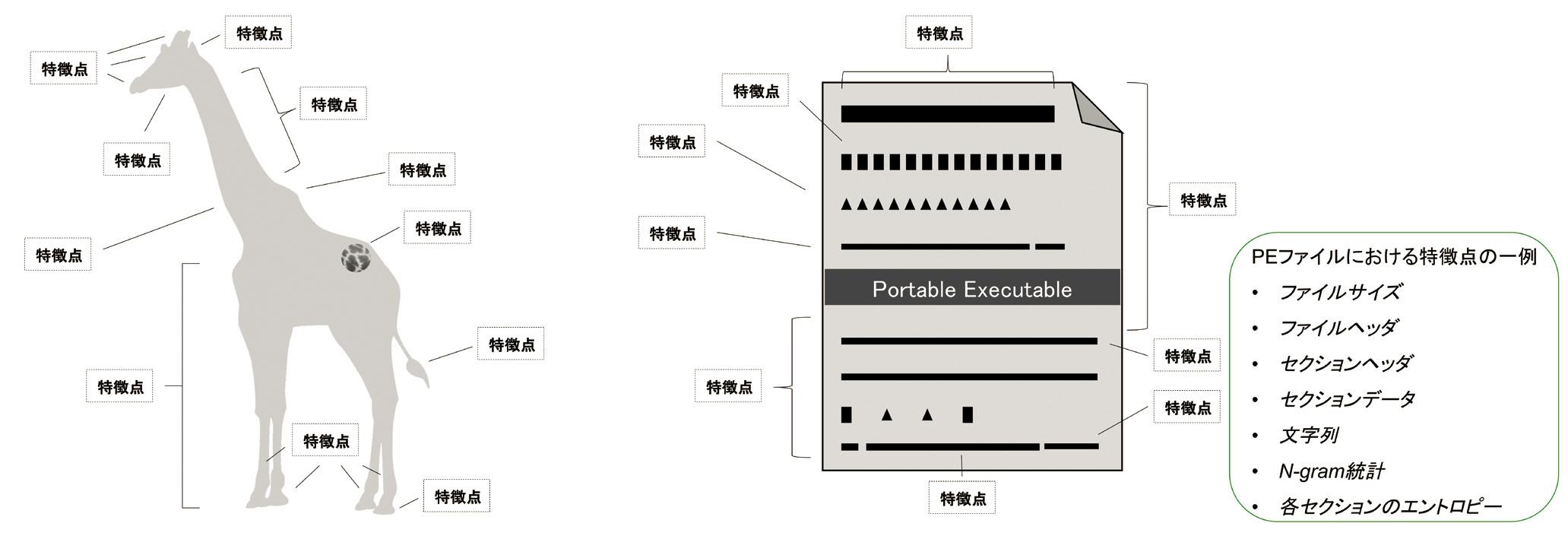 図2:CylancePROTECT のマルウェア判定に用いる「特徴点」のイメージ。キリンかそうでないかの判別ポイントを設けるのと同様に、マルウェアに顕在する判別ポイントを特徴点として設け、高精度な判定を行う(出典:Cylance Japan)