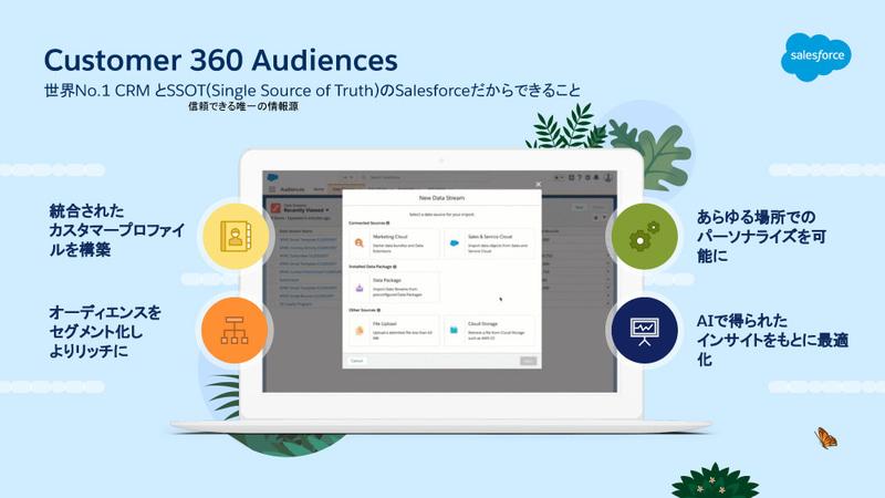 Customer 360 Audience