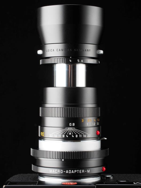 マクロアダプターMとレンズ側両方のヘリコイドを繰り出した場合の最短撮影距離は41cm、最大撮影倍率0.5倍のマクロ撮影が可能になる。