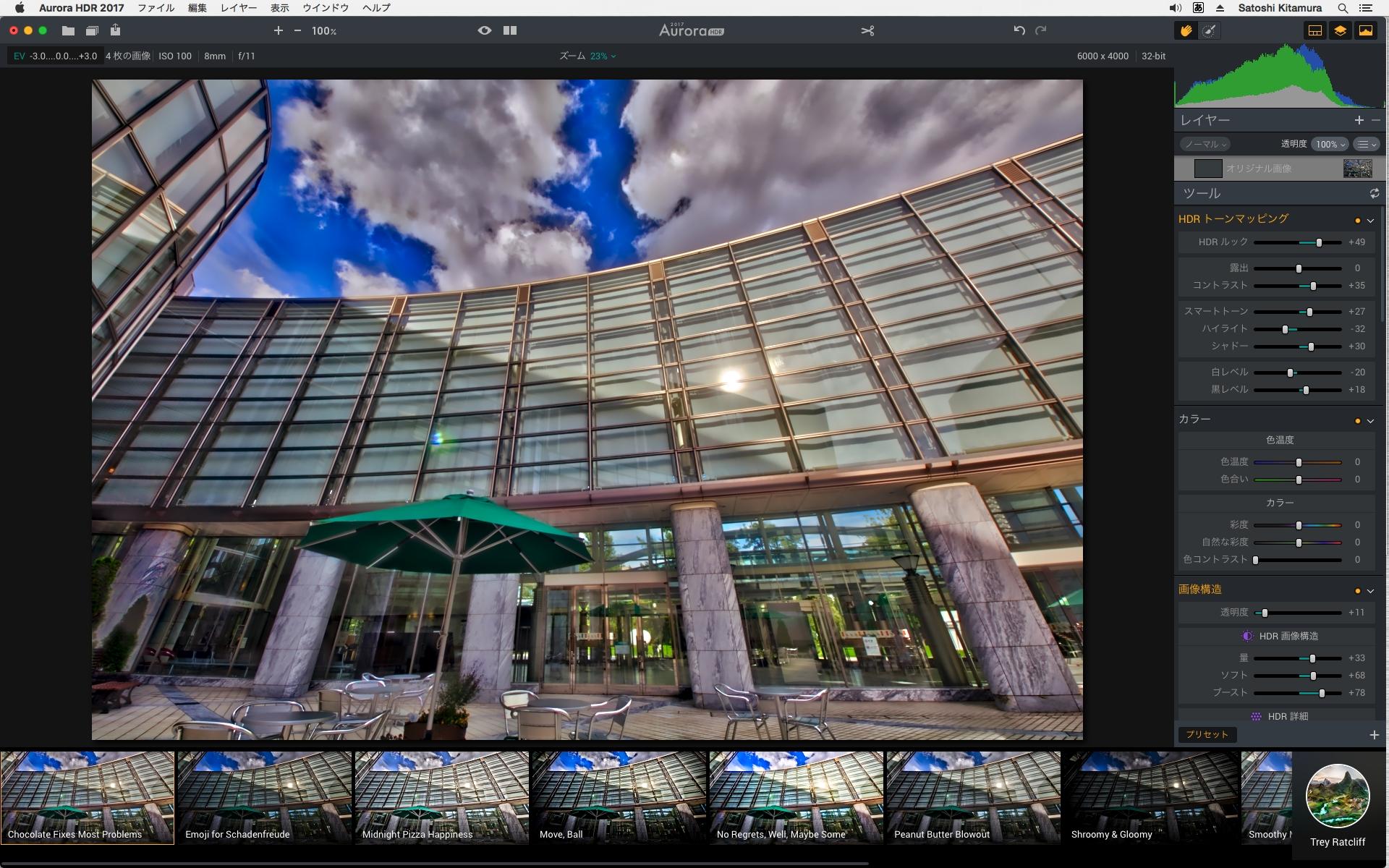 画像編集中の画面。右側にさまざまなツールのパネルがあり、下側にプリセットが表示される