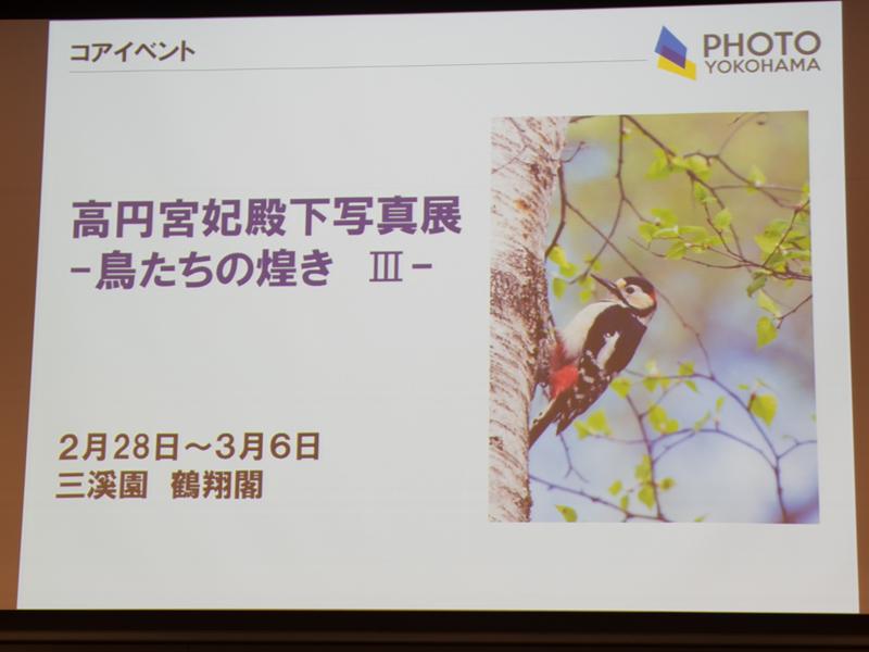 三渓園 鶴翔閣で開催する高円宮妃殿下の写真展「鳥たちの煌めき III」