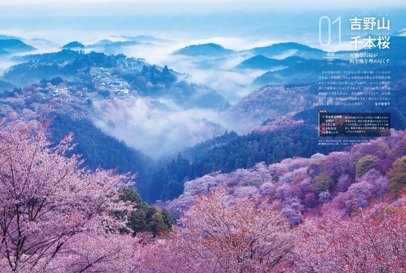写真集的にも楽しめる季節ごとのギャラリーを、約20ページずつ収録