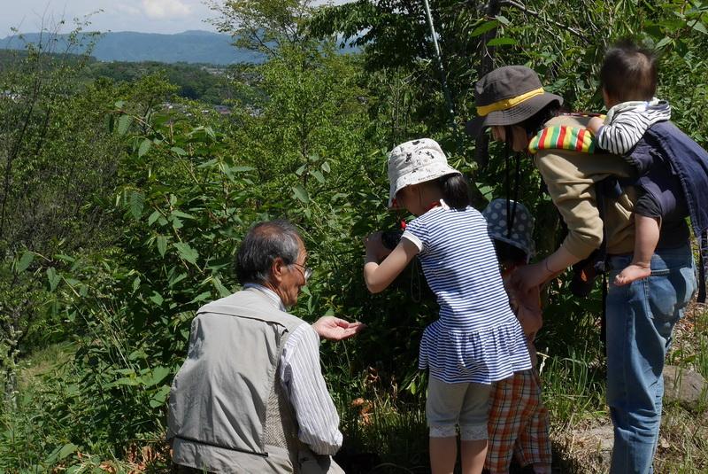 審査委員長の海野和男さんが指導する撮影体験会の様子(長野県小諸市)