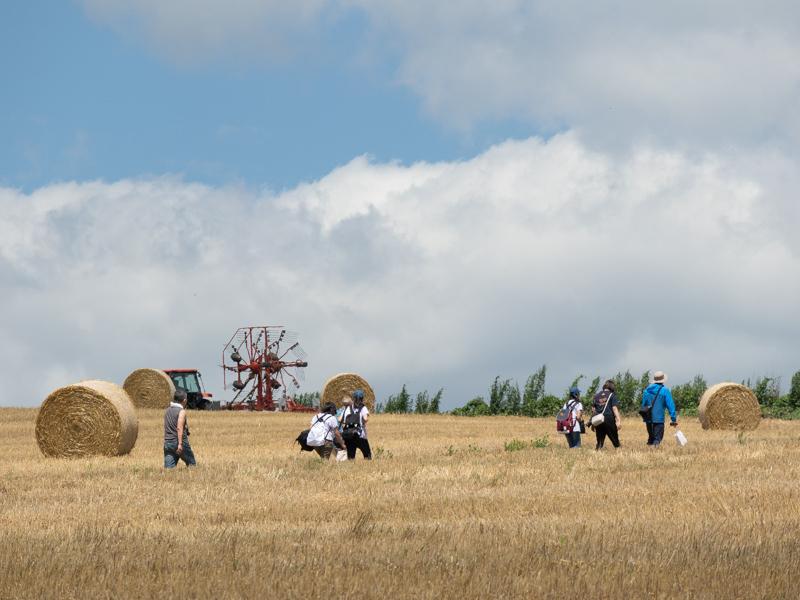 富良野の丘で許可を得て撮影する選手