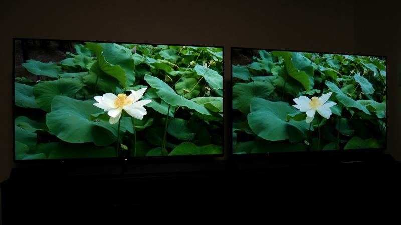 左のHDRでは白い花びらの陰影まで白トビなく再現されている。また、葉の緑色も階調幅の余裕から正確に再現されていた