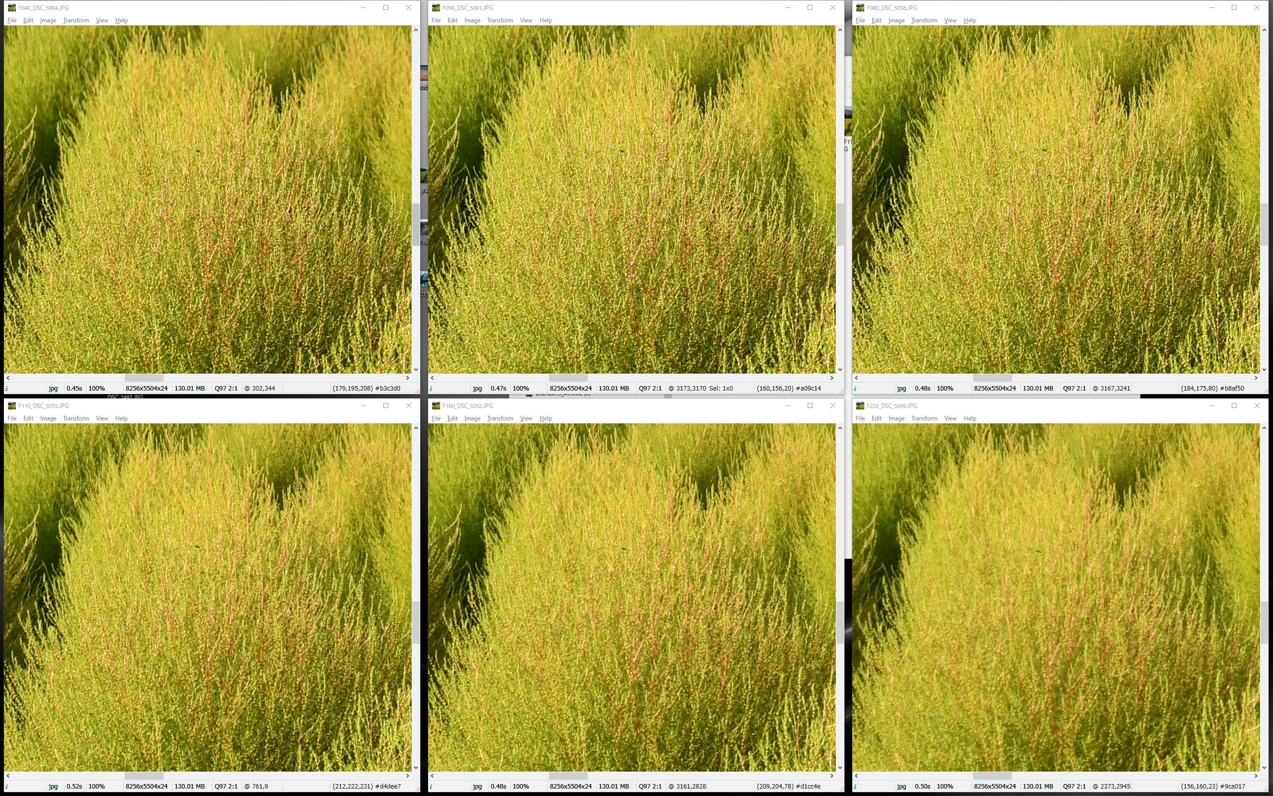 画面中央の中近景。ピントを合わせた箇所で、F4~F5.6が解像のピークで、F8から徐々に解像は低下しているが、F16まではなんとか許容範囲か? F22は解像もコントラストも低下している。