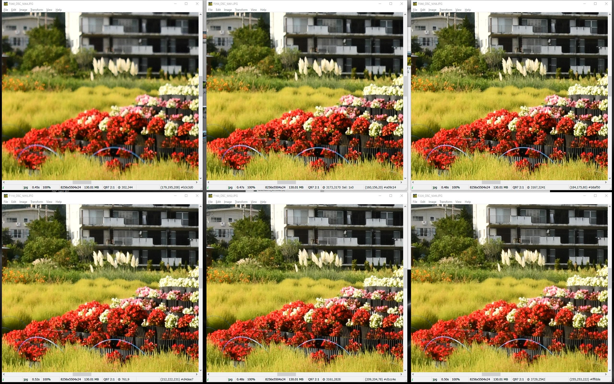 画面中央の中遠景。F8まで絞っても被写界深度外で、F11~16でも微妙な解像。F22も被写体の輪郭が鈍っていて、D850の本来の解像性能がまるで引き出せていない。
