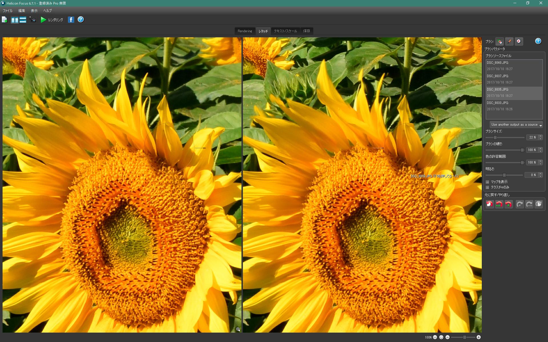 ヒマワリの花が風で揺れて、花びらが多重になっている。ファンクションキー[f・9]を押すと、マウスカーソルの置かれた箇所の合成に使用されている素材が自動的に選択され、左画面に表示される。右上のソースファイルを手動で選択することも可能。