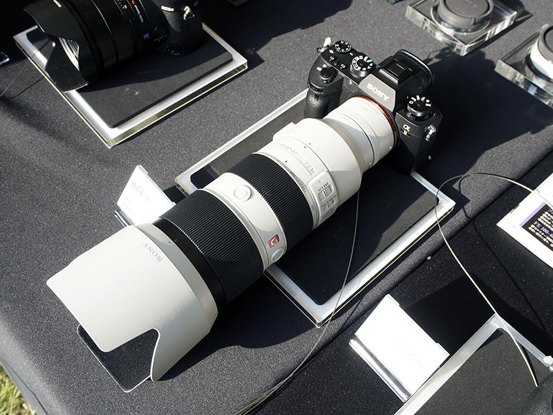 α9とFE 70-200mm F2.8 GM OSS(SEL70200GM)&2倍のテレコンバーター(SEL20TC)の組み合わせ。