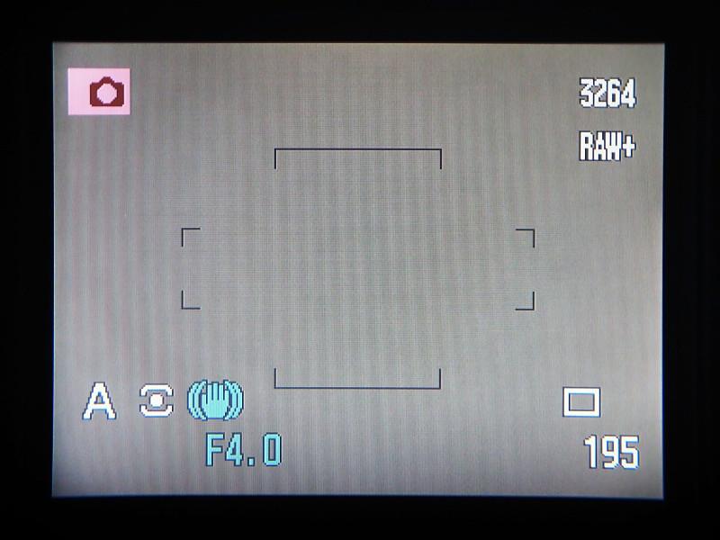 通常のAF撮影では「ワイドフォーカスフレーム」を使用。そして、ピンポイントに狙う場合は、一時的に「フレックスフォーカスポイント」に切り替える。……というのが、自分のピント合わせの流儀。