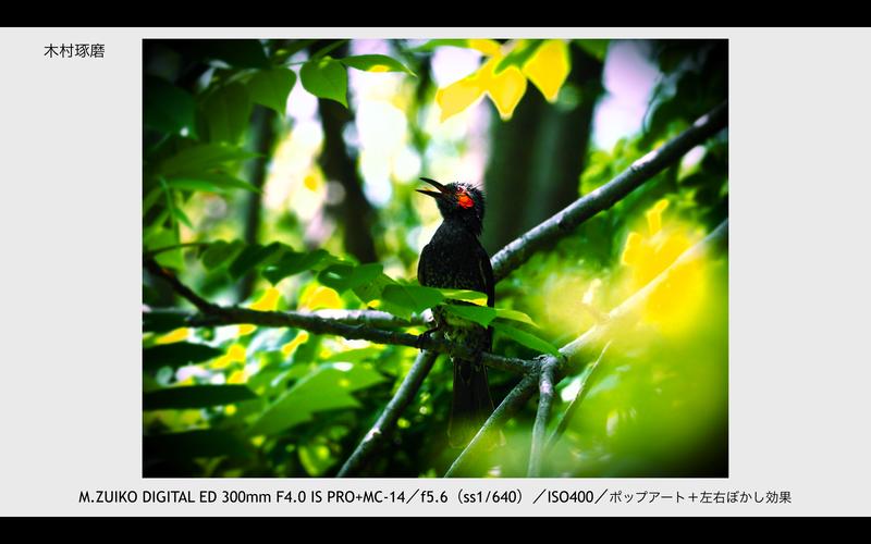 撮影:木村琢磨