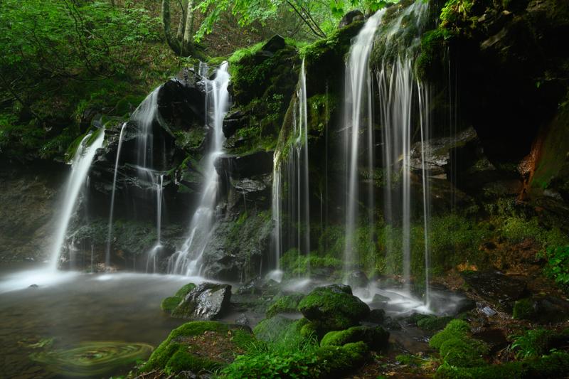 """草木の1本1本、滝に打たれる岩の硬質感、はじけ飛ぶ飛沫。すべてが鮮明に写し出され、まるで眼前にあるかと錯覚してしまうほどの解像力。階調性が良く陰影の描写が非常に美しいので空気感や立体感のある写真に仕上がった。<br><span class=""""fnt-85"""">Nikon Z 7 / NIKKOR Z 24-70mm f/2.8 S / 24mm / 絞り優先AE(F13、13秒、-0.3EV) / ISO 100</span>"""