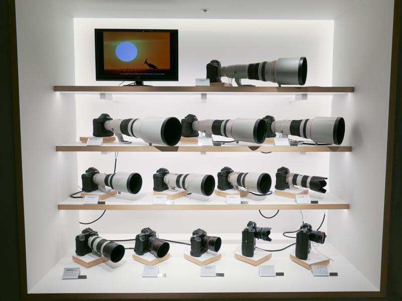 歴代EOS-1Dシリーズが集合。ほとんどに超望遠レンズが装着されているのは壮観だ。