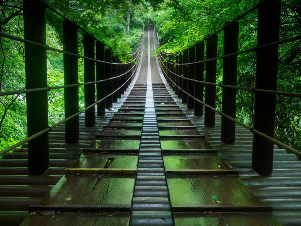 """新緑や紅葉の時期が美しい花貫渓谷にかかる吊り橋。雨の後、ぬれた吊り橋の床に緑が映り込んだ。シャドウからハイライトまで階調が豊かで奥行きのある表現ができた。<br><span class=""""fnt-85"""">OM-D E-M1 MarkIII / M.ZUIKO DIGITAL ED 12-100mm F4.0 IS PRO / 17mm(34mm相当) / 絞り優先AE(F8、1秒、-1.3EV) / ISO 200/ WB:晴天</span>"""