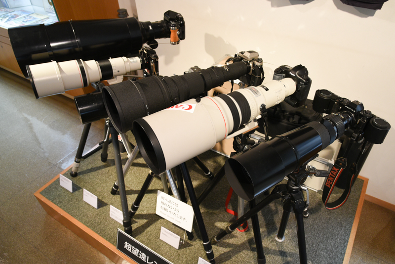 超望遠レンズがずらりとならぶ