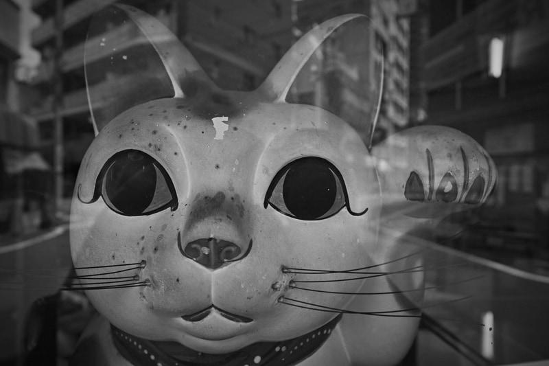 年代ものの招き猫が古い商店のウインドウにありまして、最短撮影距離0.18mで撮影してみました。ビクともしない優れた描写です。通りすがりの人に変な目で見られても撮影を続行するのがプロです。<br>dp0 Quattro(F4.5・1/500秒)ISO 400