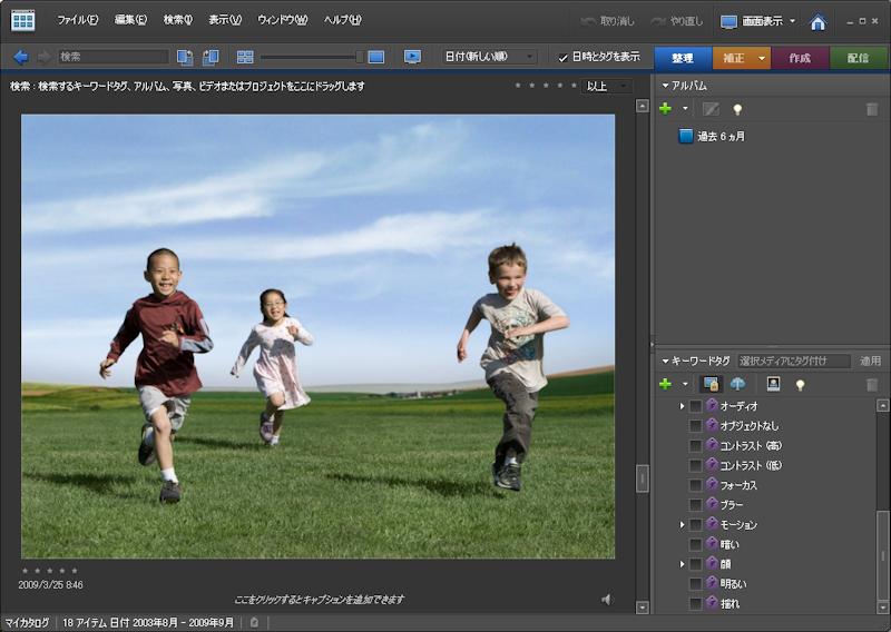 <b>写真の内容を分析し、自動的にタグ付けを行なう。画像では「顔」と「モーション」タグが付加されている</b>