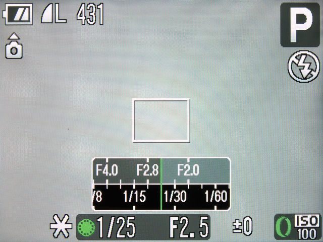 <b>ショートカットボタンにAEロックを登録して呼び出した状態。この状態でコントローラーホイールを回転させると、いわゆる「プログラムシフト」が行なえる。レリーズやズームレバー操作を行なうことでシフトを解除可能</b>