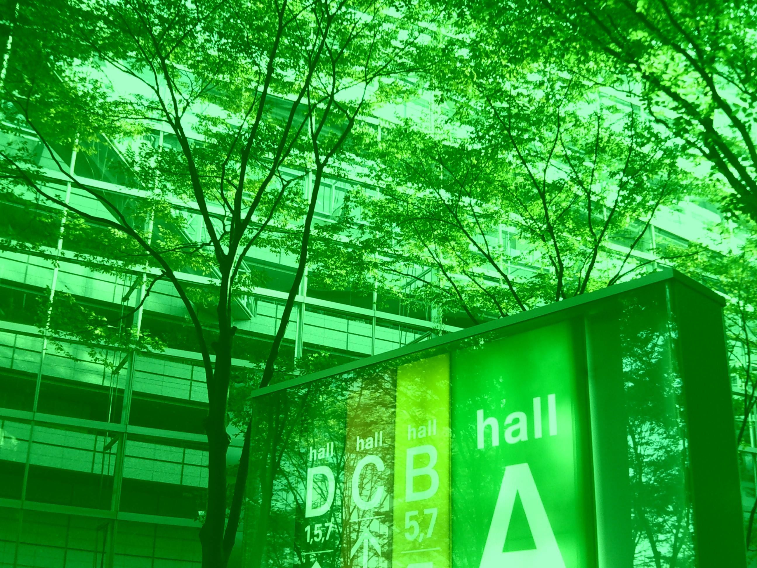 <b>緑</b>