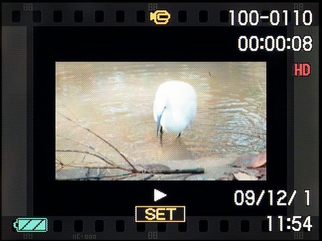 <b>動画の再生画面。フィルムの1コマふうのフレームが付いている。SETボタンを押すと再生される</b>