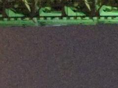 <b>ACR 4.6で現像。ノイズ低減・輝度:25</b>