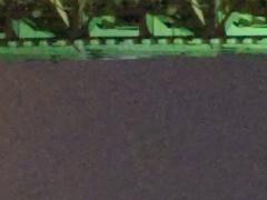 <b>ACR 4.6で現像。ノイズ低減・輝度:75</b>