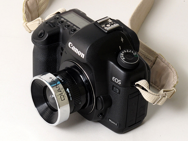 <b>Diana Lens+ 38mm SuperWide</b>