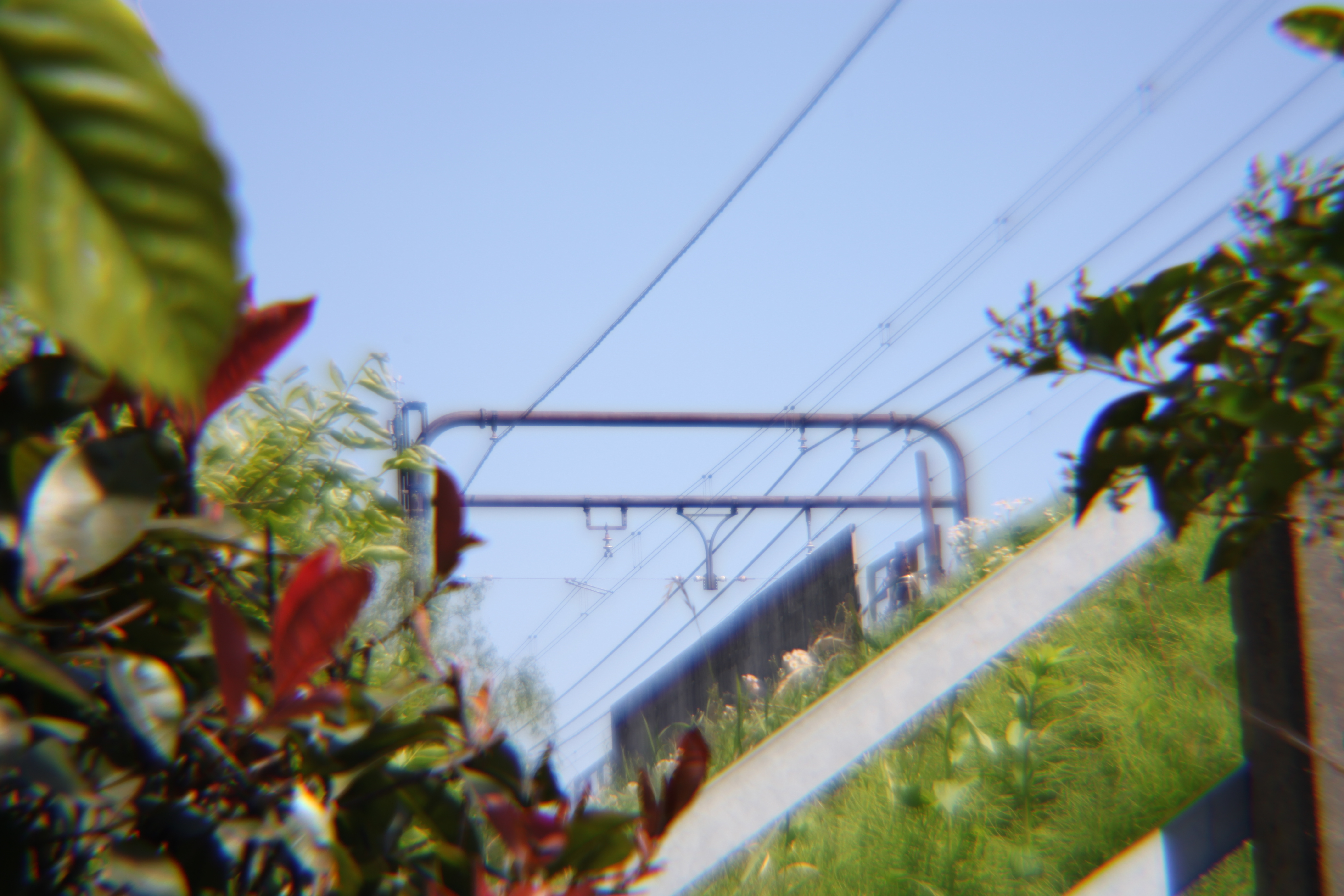 <b>EOS 5D Mark II / Diana Lens+ 110mm Soft Telephoto / 5,616×3,744 / 1/200秒 / 0EV / ISO100 / 絞り優先AE / WB:オート / 110mm</b>