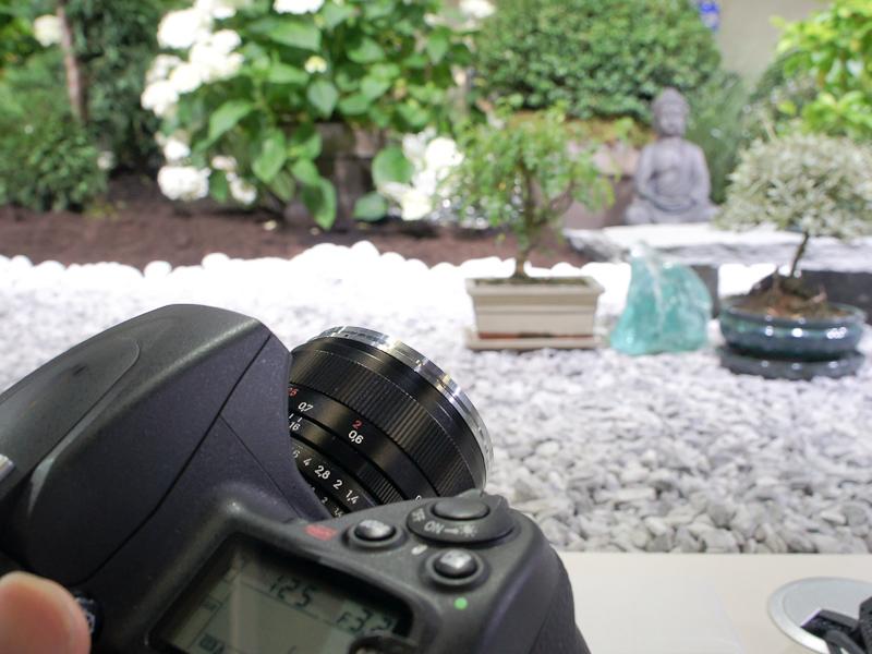 <b>ハンズオンコーナーは、盆栽を並べた庭を撮影するという趣向</b>