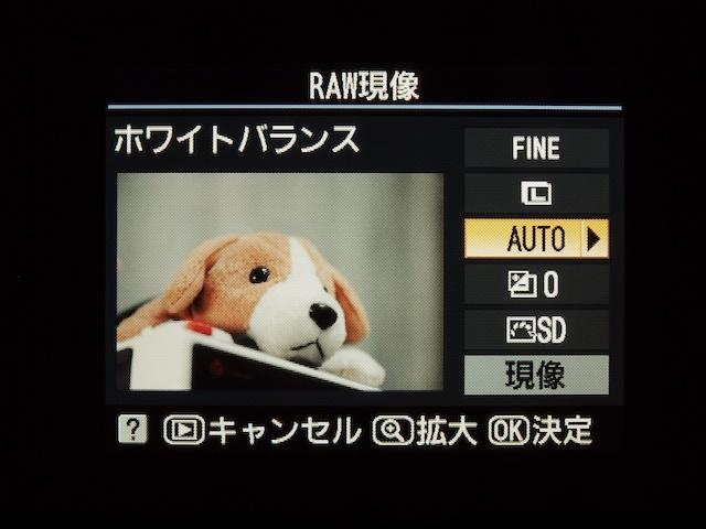 <b>RAW現像時の画面(D5000)</b>