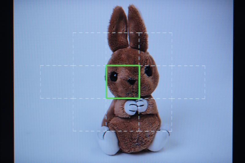 <b>測距点を選択しているところ。コントロールダイヤルでも操作できる</b>
