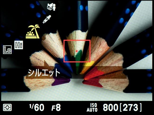 <b>【D5100】明るい背景で撮るときに、主要被写体をシルエットにできる「シルエット」</b>