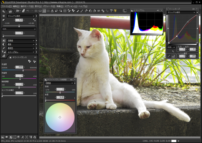 <b>SILKYPIX Developer Studio Pro5 Windows版(画像はRC版)</b>