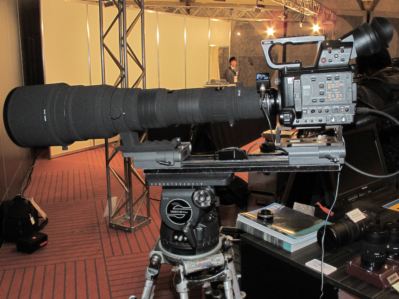 <b>APO 300-800mm F5.6 EX DG HSMでの使用例</b>