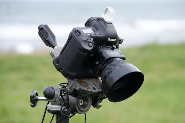 <b>両チームとも本日のカメラはキヤノンEOS-1Ds。ブツ撮りの野口さんは主にTS-Eレンズでアオリを使っていく。HALくんは28mm、35mm、50mm、85mmをメインに使っている。ダミー人物で構図を覗くときにはたいてい、24-70mmを装着してテスト撮影をして画角やレンズを決めていく。小さなカットの場合もこのレンズが多い</b>