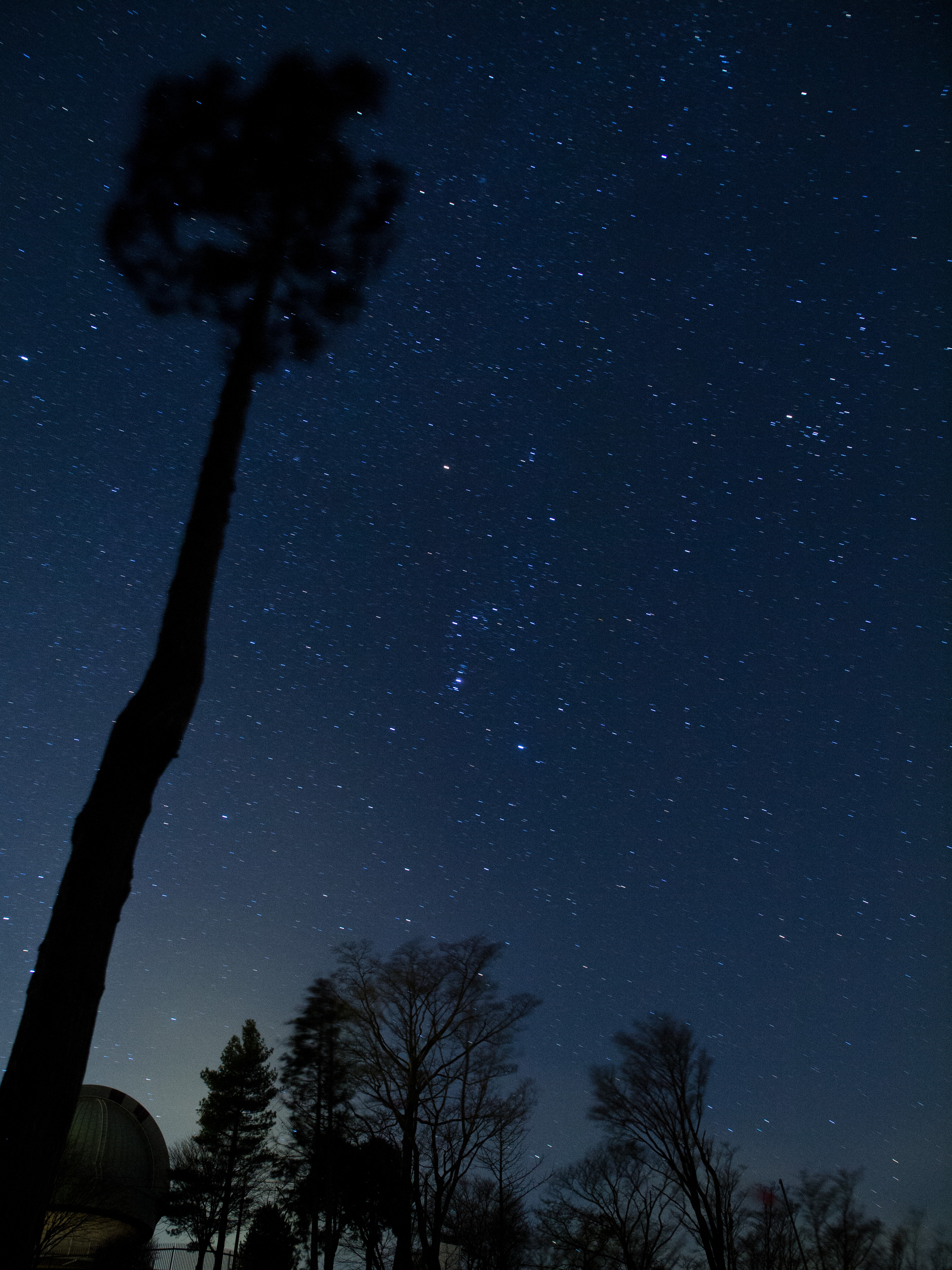 <b>カメラを三脚に固定して1分露光。地上の景色は止まっているが、星は動いてしまい流れている。E-5 / ZUIKO DIGITAL ED 12-60mm F2.8-4 SWD / 約3.8MB / 3,024×4,032 / 60秒 / F3.5 / 0EV / ISO800 / 12mm</b>