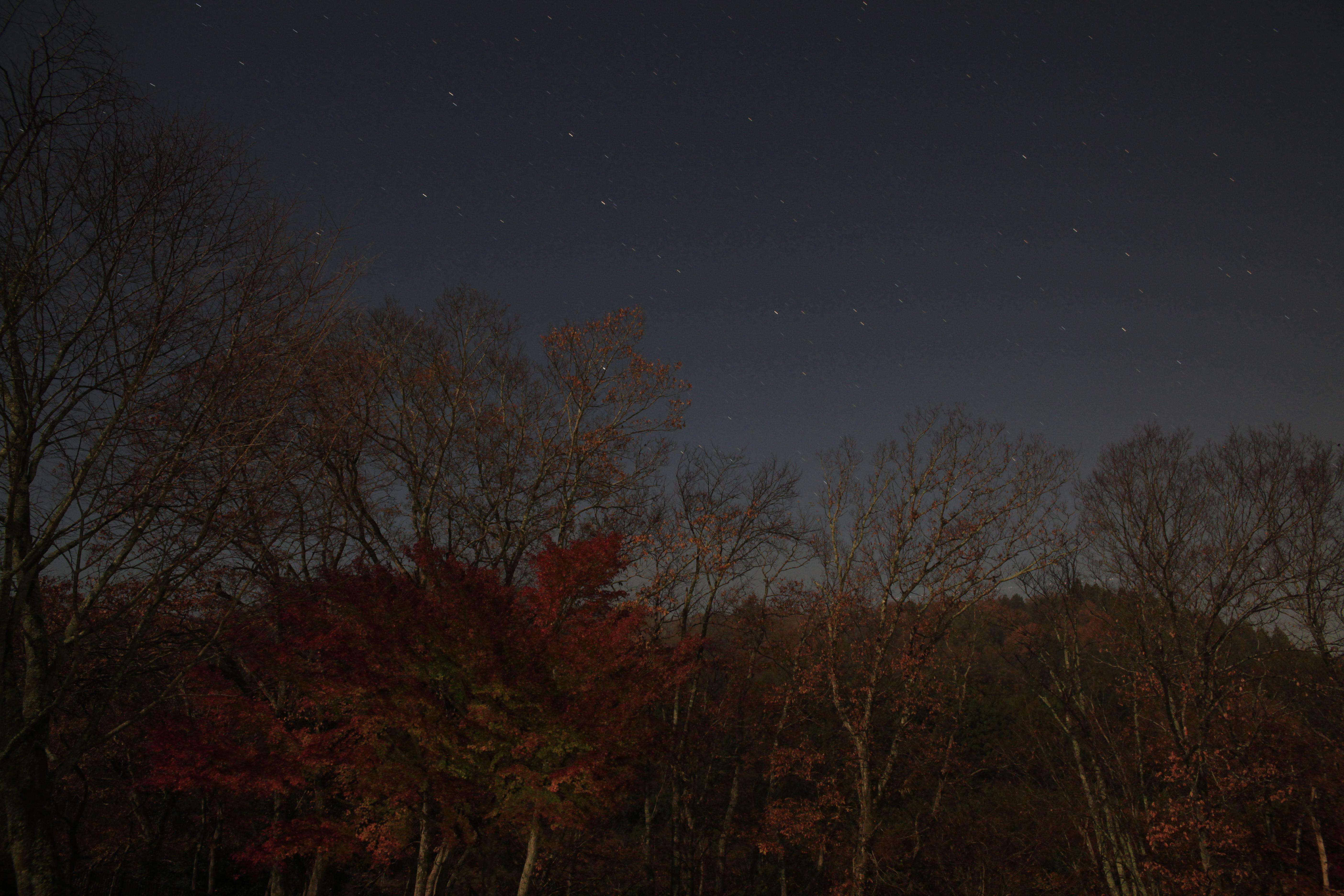 <b>ポラリエ不使用(固定撮影)。地上の風景は止まっているが星が流れて線上に写っている。EOS 5D Mark II / 24-70mm F2.8 IF EX DG HSM / 約7.2MB / 5,616×3,744 / 60秒 / F8 / 0EV / ISO1250 / 24mm</b>