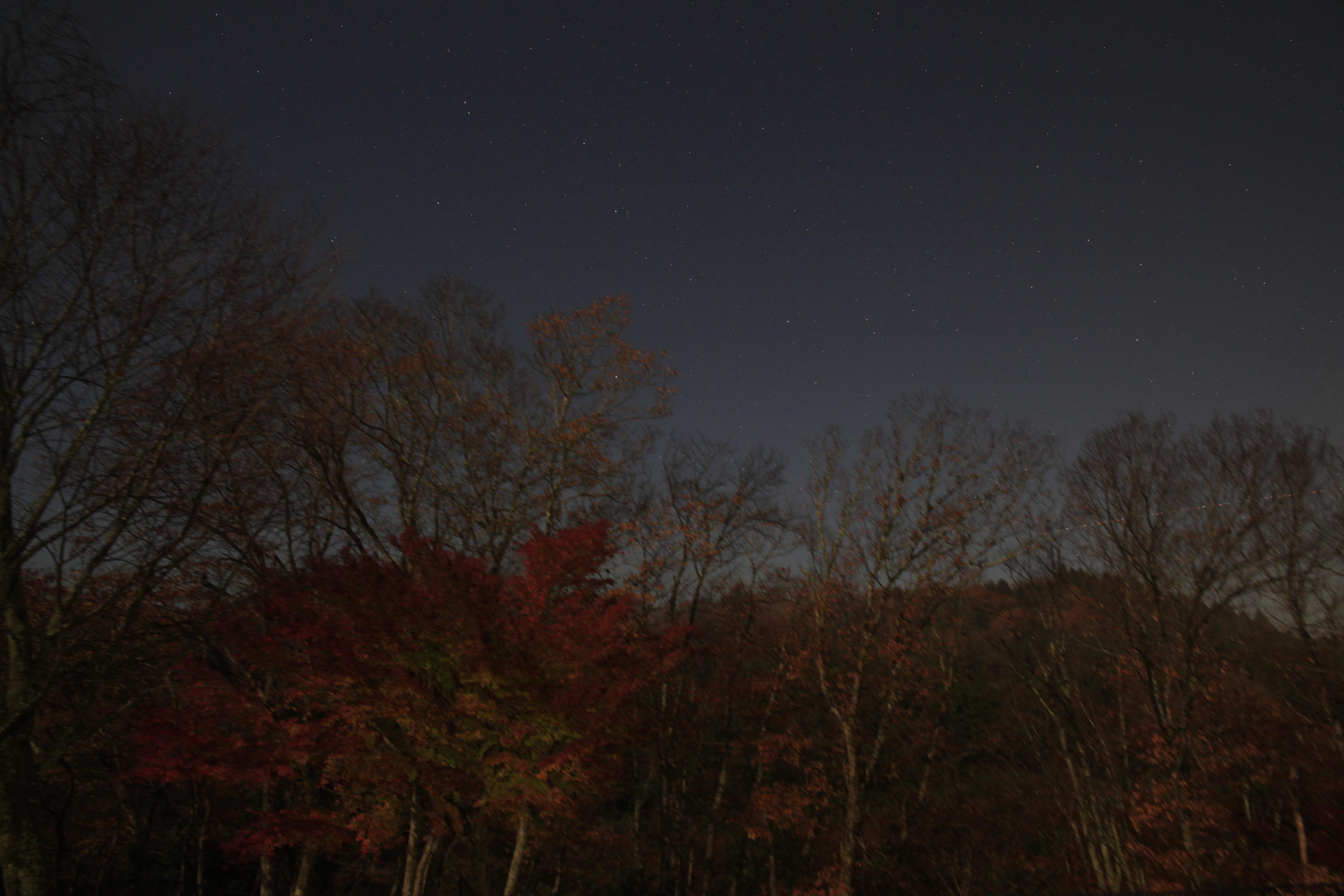 <b>ポラリエ使用(星追尾モード)。星は止まって鮮明に写っているが地上の風景がブレている。EOS 5D Mark II / 24-70mm F2.8 IF EX DG HSM / 約5.8MB / 5,616×3,744 / 60秒 / F8 / 0EV / ISO1250 / 24mm</b>