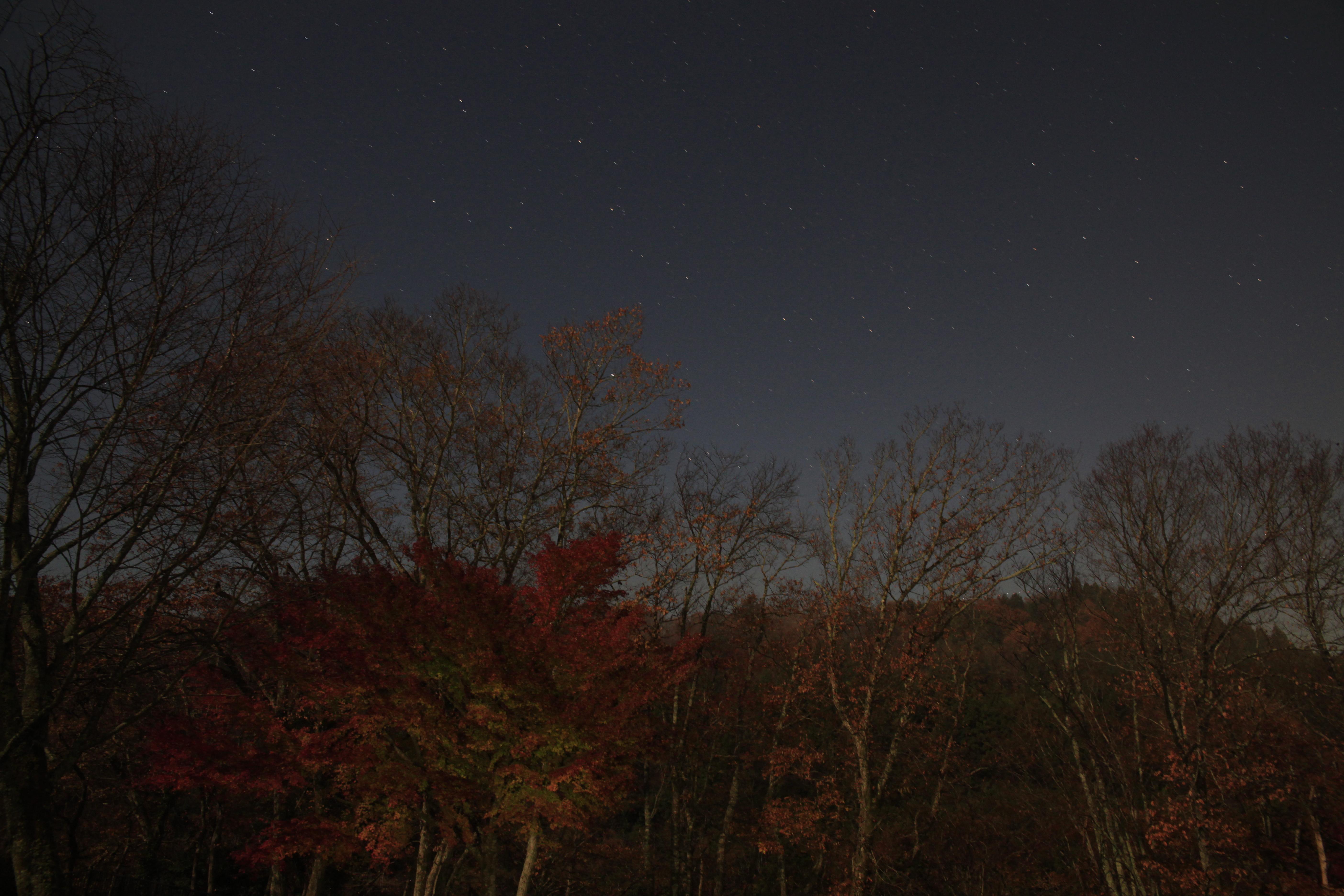<b>ポラリエ使用(星景モード)。拡大してよく見ると星も地上の風景も少しずつブレているが、鑑賞サイズによってはどちらもブレずに止まっているように見える。EOS 5D Mark II / 24-70mm F2.8 IF EX DG HSM / 約6.6MB / 5,616×3,744 / 60秒 / F8 / 0EV / ISO1250 / 24mm</b>