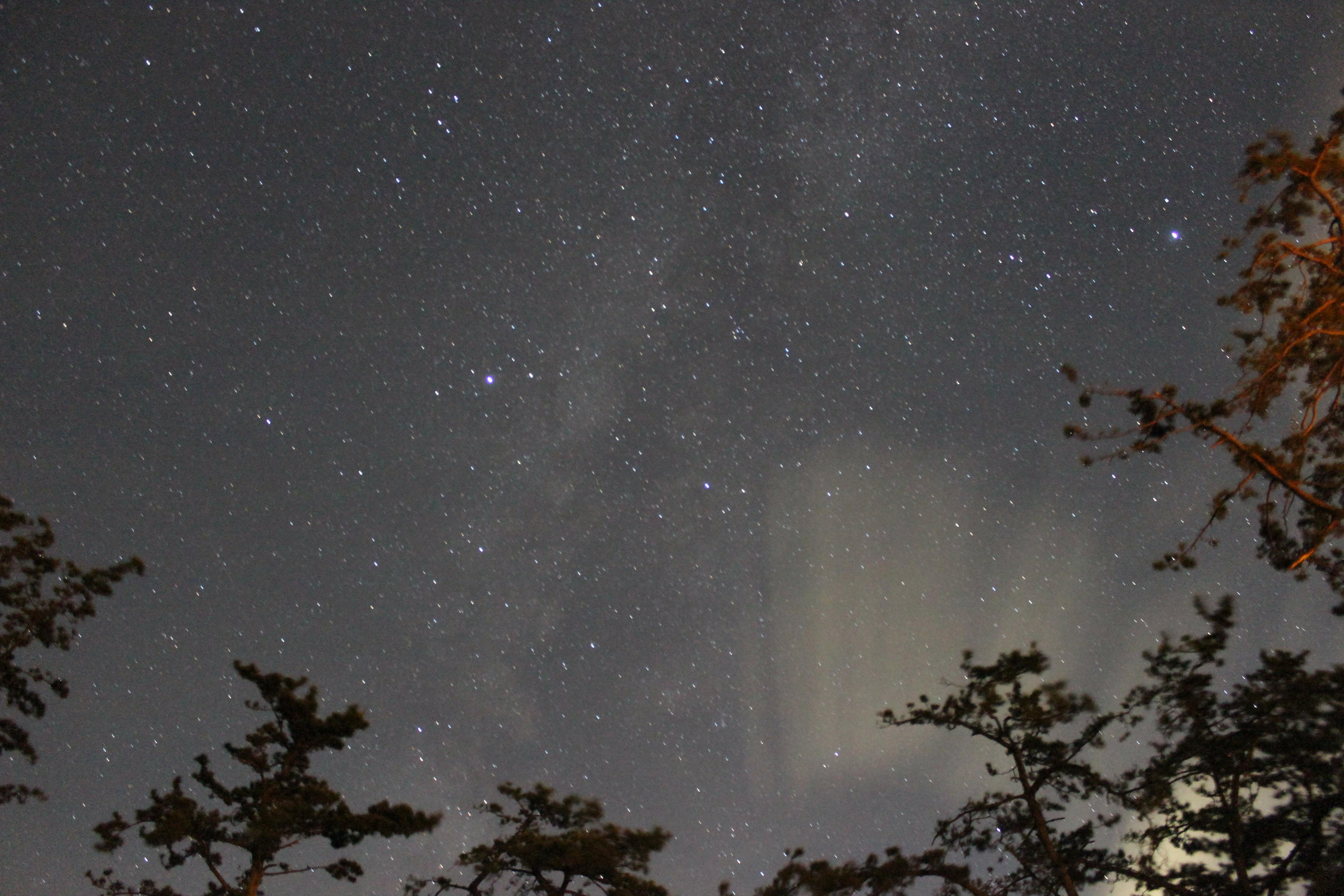 <b>上の写真と同じ露出で撮影。画面に端に入れた木々は周囲の街灯の影響が出ている。また上空にうっすらと雲が出ているため空がやや明るく写った。カメラを向けた方角は南側の空。</b>