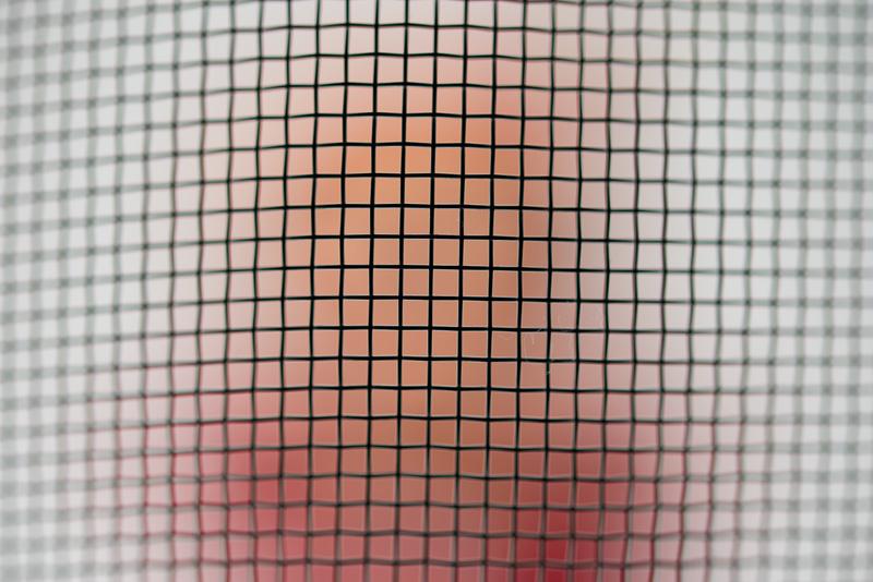 網目にピントを合わせるとこんな感じ。網が曲面になっているため、周囲はピントが合っていない。