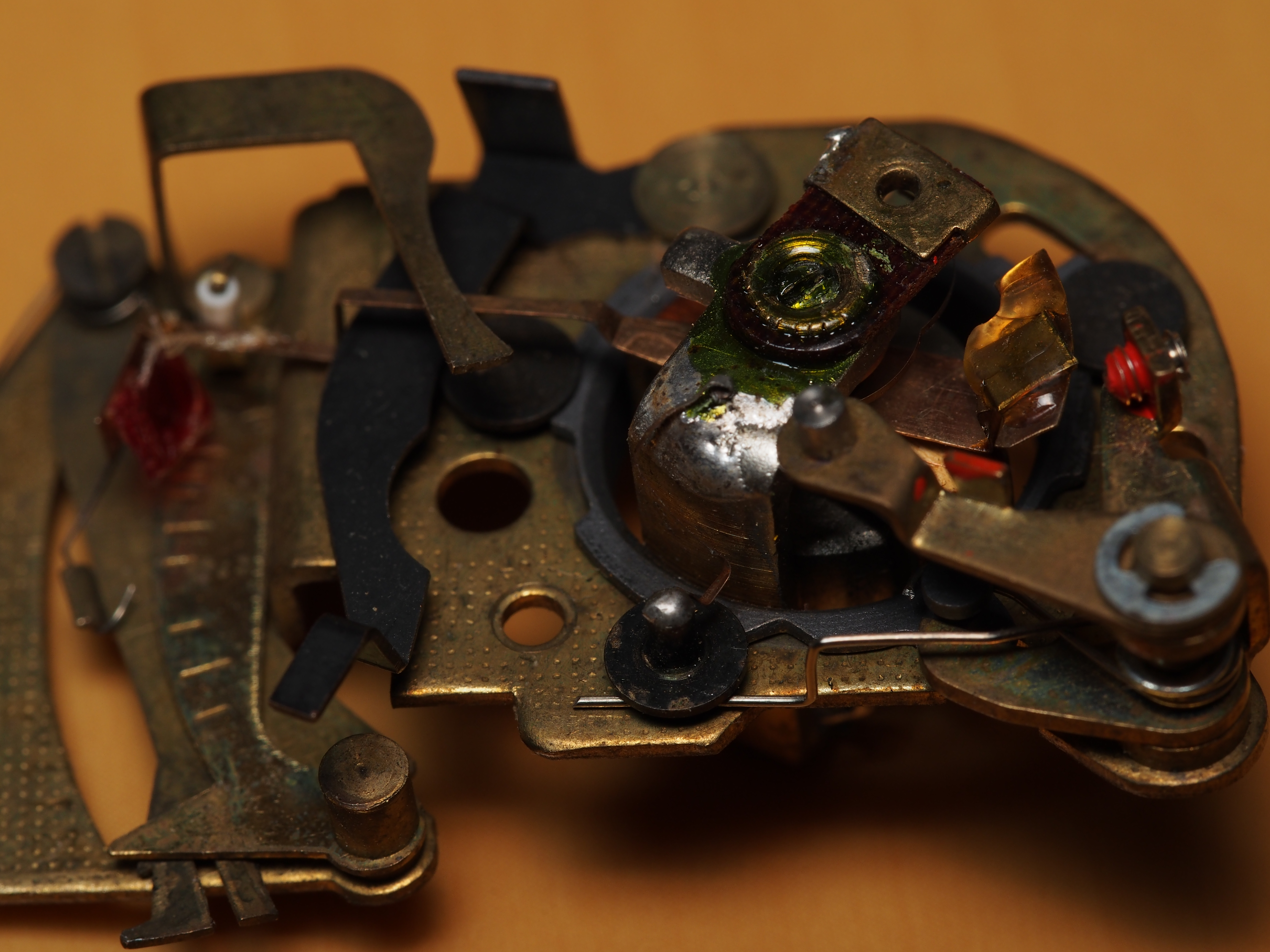 F8 / M.ZUIKO DIGITAL ED 60mm F2.8 Macro