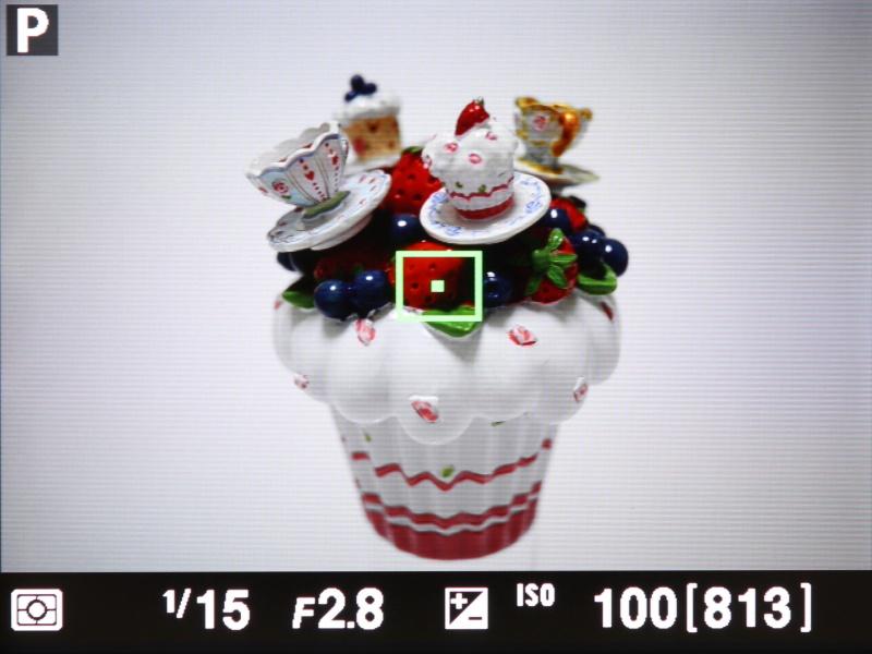 撮影時の液晶モニターの表示。「情報表示なし」