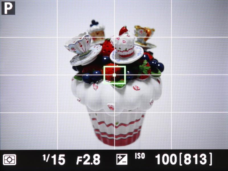 撮影時の液晶モニターの表示。「格子線」