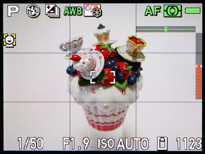 撮影時のモニター表示。水準器を備えるが、レスポンスがよすぎて、少々使いづらい。