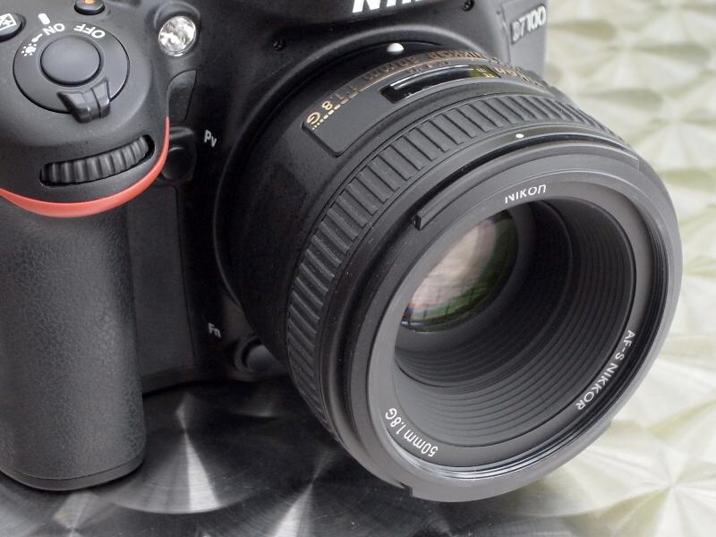 AF-S NIKKOR 50mm F1.8 Gで撮影。画角は約100mm相当になる。「約100mm相当で開放F1.8」という仕様は、大口径中望遠レンズとしてかなり魅力的だ(ここではF2.2と微妙に絞ってるけど)。D7100 / 1/125秒 / F2.2 / 0EV / ISO100 / 絞り優先AE / WB:晴天 / 50mm