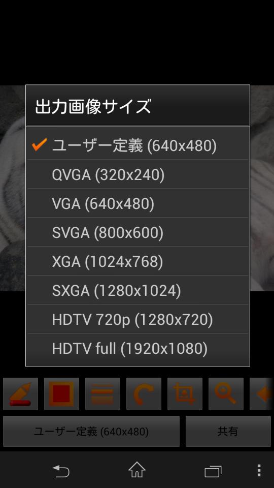 「ユーザー定義(640×480)」部をタップすると「出力画像サイズ」の選択画面が表示される